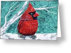 Pudgy Cardinal Greeting Card