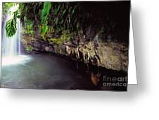 Puerto Rico Waterfall Greeting Card