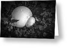 Puff The Magic Fungi Greeting Card