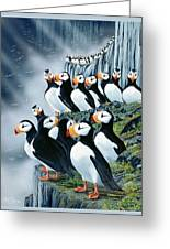Puffin College Greeting Card