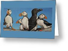 Puffin Palooza 2 Greeting Card