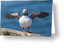 Puffin With Fish For Tea Greeting Card