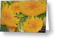 Puffy Golden Delight Greeting Card