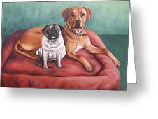 Pug And Rhodesian Ridgeback Greeting Card