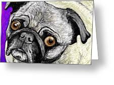 Olivia The Pug Greeting Card