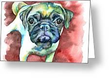 Pug In Red Greeting Card