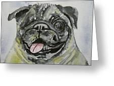 One Eyed Pug Portrait Greeting Card