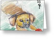 Puggle With Red Ball Greeting Card