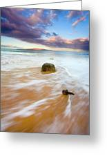 Pulled To The Sea Greeting Card by Mike  Dawson