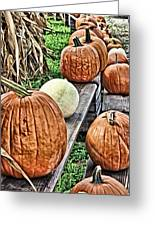 Pumkins In A Row Greeting Card