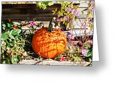 Pumpkin And Flowers Greeting Card