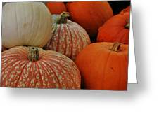 Pumpkin Colors Greeting Card