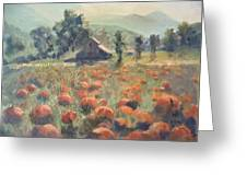 Pumpkin Fields Greeting Card