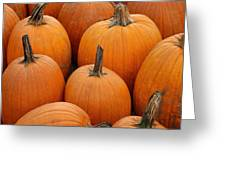 Pumpkin Harvest Greeting Card