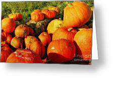 Pumpkin Meeting Greeting Card