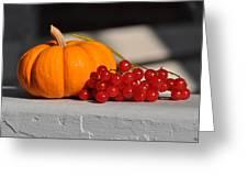 Pumpkin N Berries Greeting Card