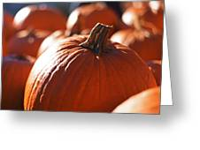 Pumpkin Patch Farm Greeting Card