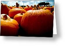 Pumpkin Patch Piles Greeting Card