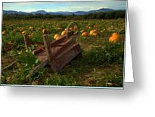 Pumpkin Patch. Greeting Card