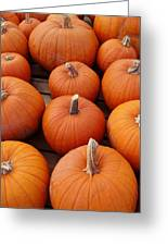 Pumpkin Time Greeting Card