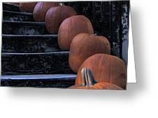 Pumpkins - Halloween Greeting Card