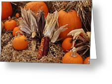 Pumpkins And Corn Greeting Card