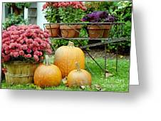 Pumpkins And Flowers Greeting Card