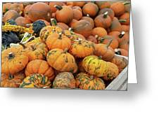 Pumpkins For Sale Greeting Card