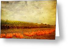 Pumpkins In The Corn Field Greeting Card by Kathy Jennings