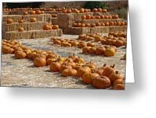 Pumpkins On Bales Greeting Card