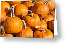 Pumpkins Pile 1 Greeting Card