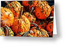 Pumpkins With Warts Greeting Card