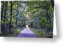 Pumpkinvine Trail In Fall Greeting Card