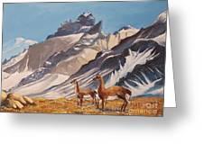 Puna De Atacama Greeting Card