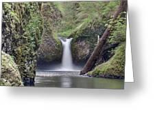 Punch Bowl Falls At Eagle Creek Closeup Greeting Card