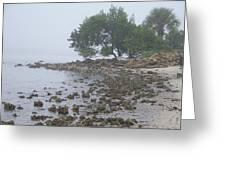 Punta Gorda Greeting Card