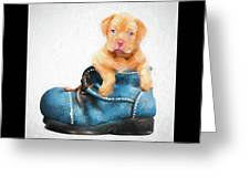 Pup In A Shoe Greeting Card