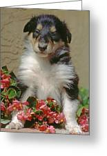 Pup In The Flowers Greeting Card