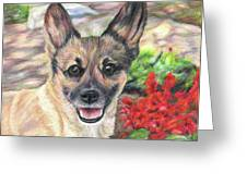 Pup In The Garden Greeting Card