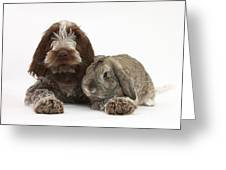 Puppy And Rabbt Greeting Card