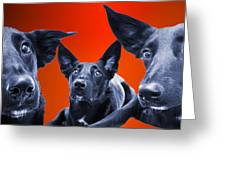 Puppy Dog Panoramic Montage Greeting Card