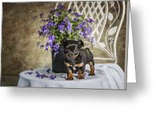 Puppy Dog With Flowers Greeting Card