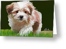 Puppy In High Grass Greeting Card