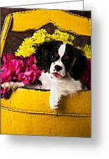 Puppy In Yellow Bucket  Greeting Card by Garry Gay