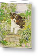 Puppy On The Step Greeting Card