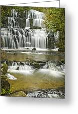 Purakanui Falls Greeting Card