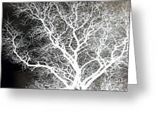 Pure Energy- Lightning Tree Greeting Card