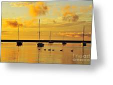Pure Michigan Gold Greeting Card