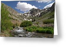 Pure Mountain Beauty Greeting Card