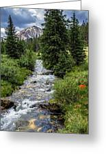 Pure Rocky Mtn. Spring Water Greeting Card